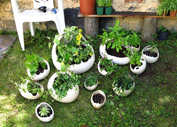 bepflanzung_07_klein